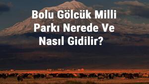 Bolu Gölcük Milli Parkı Nerede Ve Nasıl Gidilir Bolu Gölcük Milli Parkı Konaklama, Kamp, Giriş Ücreti Ve Özellikleri Hakkında Bilgi