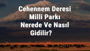 Cehennem Deresi Milli Parkı Nerede Ve Nasıl Gidilir Cehennem Deresi Milli Parkı Konaklama, Kamp, Giriş Ücreti Ve Özellikleri Hakkında Bilgi