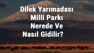 Dilek Yarımadası Milli Parkı Nerede Ve Nasıl Gidilir Dilek Yarımadası Milli Parkı Konaklama, Kamp, Giriş Ücreti Ve Özellikleri Hakkında Bilgi