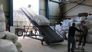 Battaniyenin üretim merkezi Uşakta taleplere yetişilemiyor