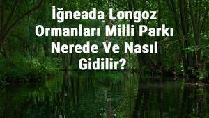İğneada Longoz Ormanları Milli Parkı Nerede Ve Nasıl Gidilir Konaklama, Kamp, Giriş Ücreti Ve Özellikleri Hakkında Bilgi