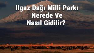 Ilgaz Dağı Milli Parkı Nerede Ve Nasıl Gidilir Ilgaz Dağı Milli Parkı Konaklama, Kamp, Giriş Ücreti Ve Özellikleri Hakkında Bilgi