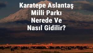 Karatepe Aslantaş Milli Parkı Nerede Ve Nasıl Gidilir Karatepe Aslantaş Milli Parkı Konaklama, Kamp, Giriş Ücreti Ve Özellikleri Hakkında Bilgi