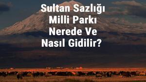 Sultan Sazlığı Milli Parkı Nerede Ve Nasıl Gidilir Sultan Sazlığı Milli Parkı Konaklama, Kamp, Giriş Ücreti Ve Özellikleri Hakkında Bilgi