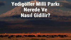 Yedigöller Milli Parkı Nerede Ve Nasıl Gidilir Yedigöller Milli Parkı Konaklama, Kamp, Giriş Ücreti Ve Özellikleri Hakkında Bilgi