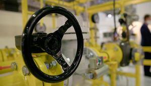 İrandan doğal gaz ithalatı sert düşüş gösterdi