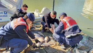 Tahtalı Barajında balık avlayan 2 kişiye, 9 bin lira ceza