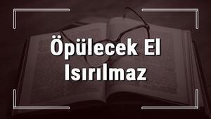 Öpülecek El Isırılmaz atasözünün anlamı ve örnek cümle içinde kullanımı (TDK)