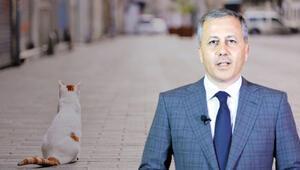 Vali Yerlikayadan İstanbula gevşeme müjdesi
