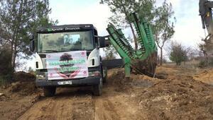 BOTAŞ, Saros FSRU projesi kapsamında 85 bin fidan dikti