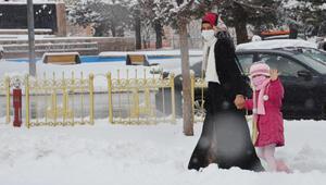 Erzuruma mart karı