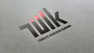 Son dakika haberi: TÜİK Başkanlığına Sait Erdal Dinçer atandı