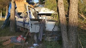 Yoldan çıkan kamyonet ağaçlara çarptı: 2 yaralı