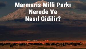 Marmaris Milli Parkı Nerede Ve Nasıl Gidilir Marmaris Milli Parkı Konaklama, Kamp, Giriş Ücreti Ve Özellikleri Hakkında Bilgi