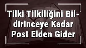 Tilki Tilkiliğini Bildirinceye Kadar Post Elden Gider atasözünün anlamı ve örnek cümle içinde kullanımı (TDK)
