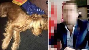 Köpeğe cinsel istismarda bulunan o cani ile ilgili flaş gelişme
