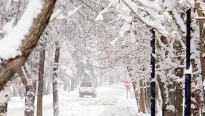 Doğuya bahar karı