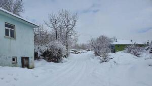 Bingöl Karlıovada kar yağışı