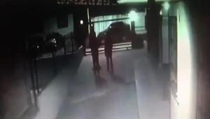 Beylikdüzü'nde 4 evden hırsızlık yaptıkları belirlenen 2 şüpheli tutuklandı