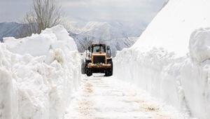 Muşta kar kaplanları 4 metre karla kaplı köy yollarını açmaya çalışıyor
