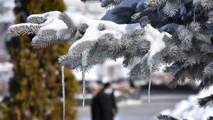 Doğu Anadoluda dondurucu soğuklar martta da etkisini sürdürüyor