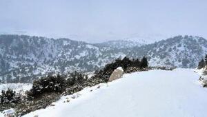 Antalyanın yüksek kesimlerinde kar etkili oldu