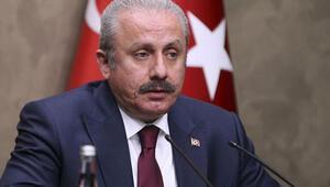 TBMM Başkanı Şentop: Cumhurbaşkanlığı Hükümet Sisteminin en alt standardı, Parlamenter sistemin nihai standardıdır