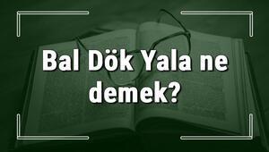 Bal Dök Yala ne demek Bal Dök Yala deyiminin anlamı ve örnek cümle içinde kullanımı (TDK)
