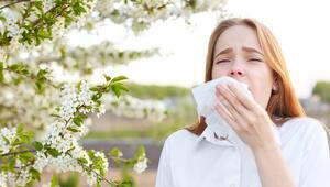 Bahar Alerjisine Ne İyi Gelir, Nasıl Geçer