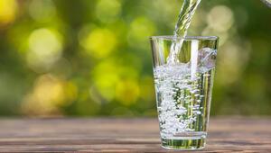 Dünya Su Günü, suyun değeri temasıyla yarın kutlanacak