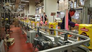 Çaykur işçi alımı 2021 için başvuru süreci başladı İŞKUR Çaykur 500 işçi alımı başvuru şartları ve detayları