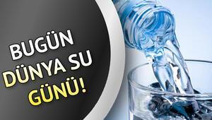 Bugün Dünya Su Günü İşte 22 Mart Dünya Su Günü sözleri ve tarihi