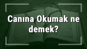 Canına Okumak ne demek Canına Okumak deyiminin anlamı ve örnek cümle içinde kullanımı (TDK)