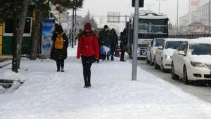 Yozgatta kar etkili oldu