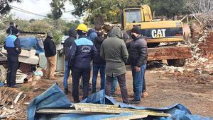 Burgazadada ahırlar yıkıldı  Hayvanseverler tepki gösterdi