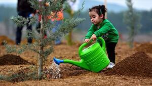 2023e kadar Türkiye genelinde 1,6 milyar fidan toprakla buluşacak