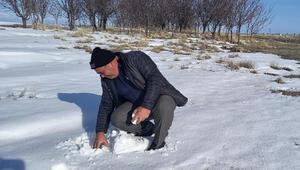 Aksaraylı çiftçilerin kar sevinci
