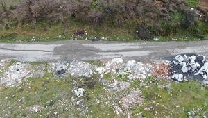 Arnavutköyde kaçak kimyasal madde dökümü iddiası... Hayvanlarımın gözleri yaşarıyor