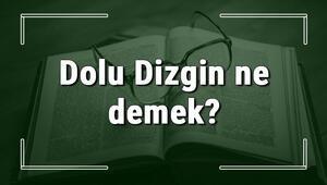 Dolu Dizgin ne demek Dolu Dizgin deyiminin anlamı ve örnek cümle içinde kullanımı (TDK)