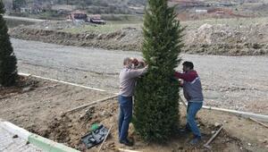 Tokatta Erenler Şehitliğinde ağaçlandırma ve bakım çalışması