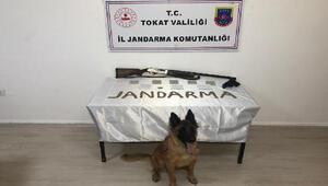 Tokatta, uyuşturucu ticaretine 11 tutuklama