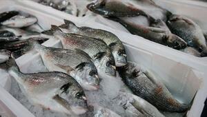 Nisanda hangi balıklar yenir İşte Nisan ayında en lezzetli balıklar