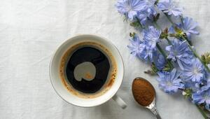 Hindiba kahvesi nedir, nasıl tüketilir İşte, hindiba kahvesinin faydaları ve zararları