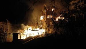 Artvinde korkutan yangın: 7 ev kül oldu