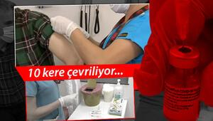 BioNTech aşısı Türkiyede uygulanmaya başlandı... İşte merak edilen farklar
