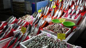 Samsunda av yasağı öncesi balıklara yoğun talep