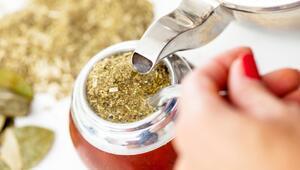 Mate çayı nedir, nasıl hazırlanır İşte, mate çayının faydaları