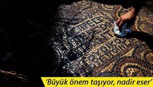 İzmirde 1500 yıllık mozaik bulundu Ulaşılması çok zor bir bölge