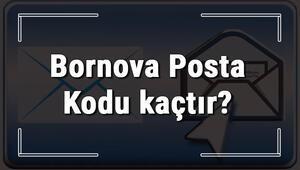Bornova Posta Kodu kaçtır İzmirin ilçesi Bornovanın ve mahallelerinin Posta Kodları
