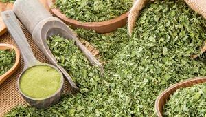 Moringa çayı nedir, nasıl tüketilir İşte moringa çayının faydaları